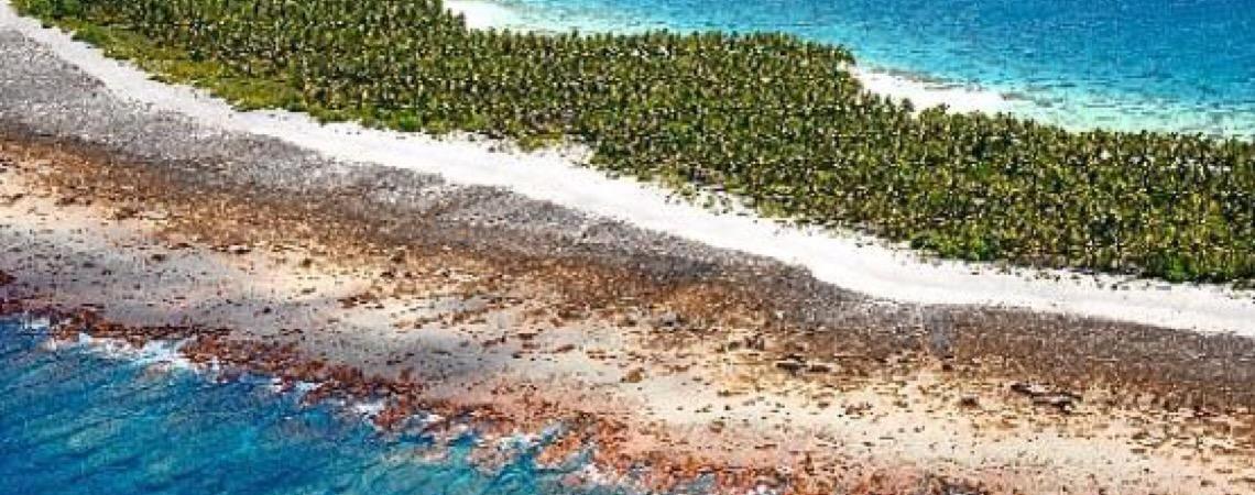 Atlas global de recifes. Em defesa da biodiversidade