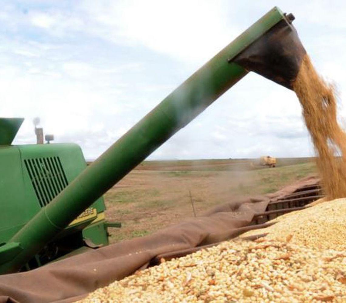 DATAGRO projeta elevação para a safra de soja no Brasil