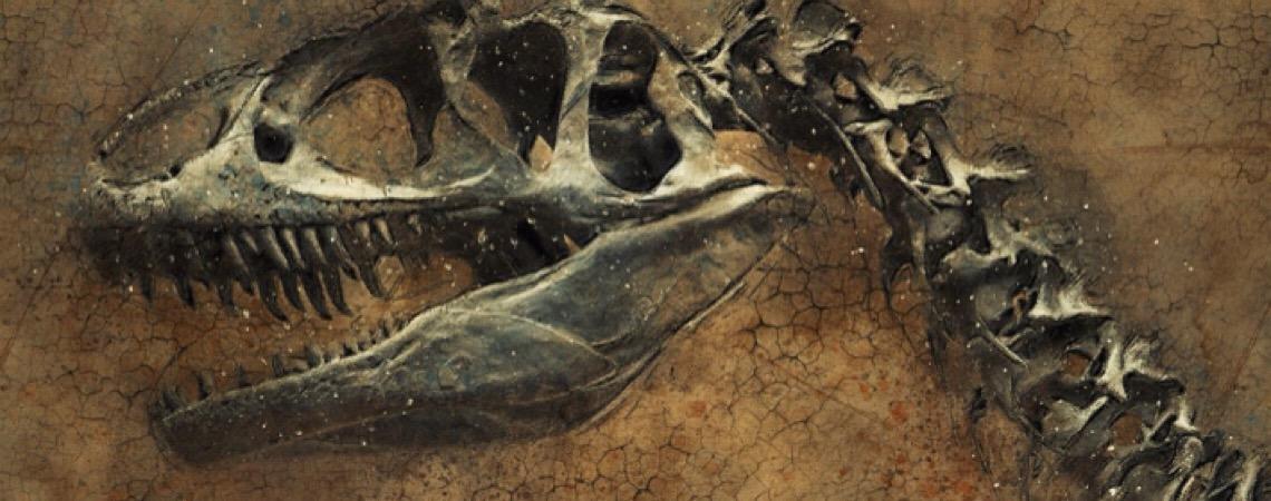 A pedido da Procuradoria, Brasil vai repatriar fósseis de dino de 100 milhões de anos