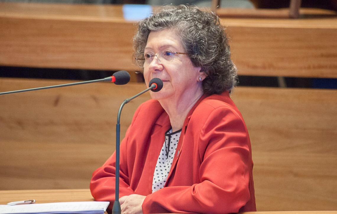 Parlamentares em Brasília sugerem ações para enfrentar o feminicídio