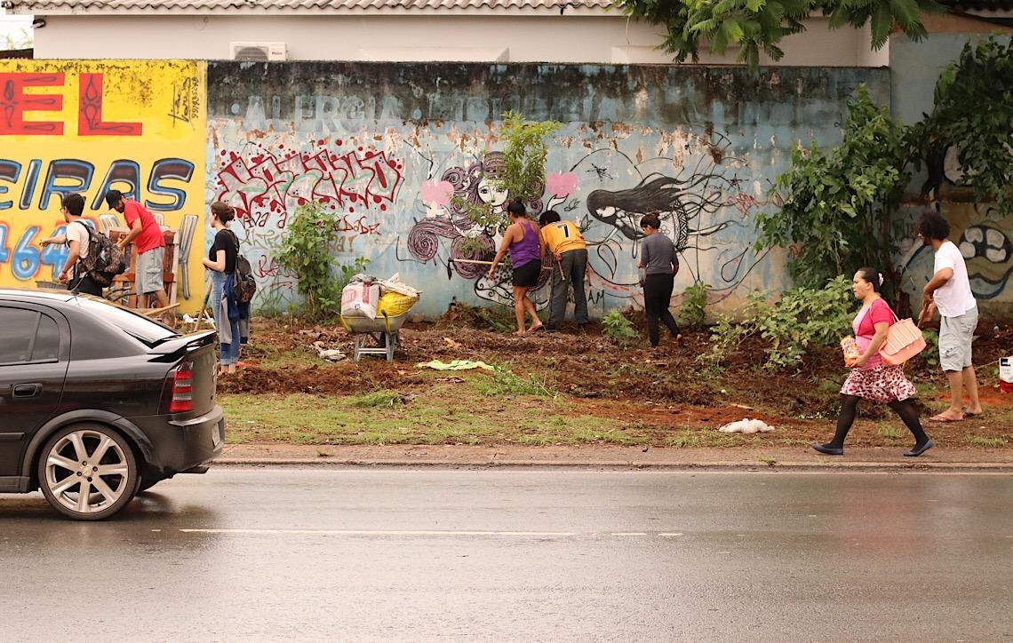 Compostagem em Brasília. Prática envolve comunidade e transforma ruas em espaços verdes