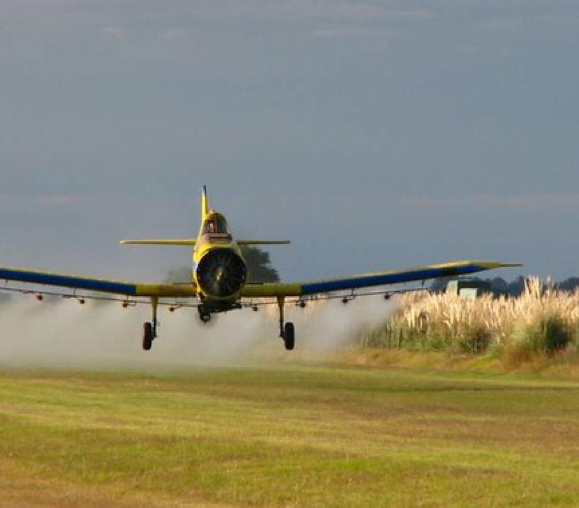 Governo Bolsonaro libera uso de mais 31 agrotóxicos; já são 169 apenas neste ano