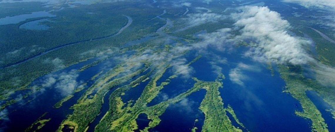 Em carta ao ministro. Noruega e Alemanha defendem objetivos e governança do Fundo Amazônia
