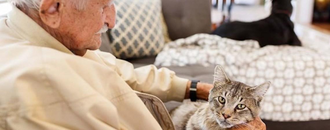 Idosos se sentem mais amados com um pet