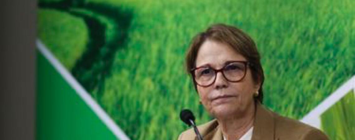 Acordo União Europeia-Mercosul. Ministra Tereza Cristina não vê entraves às exportações do Brasil