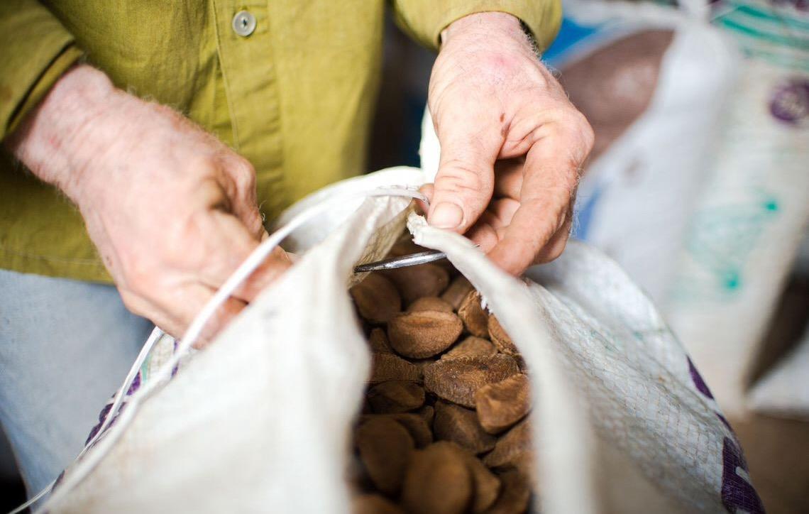Ministério da Agricultura do Brasil anuncia medidas de estímulo a cooperativas