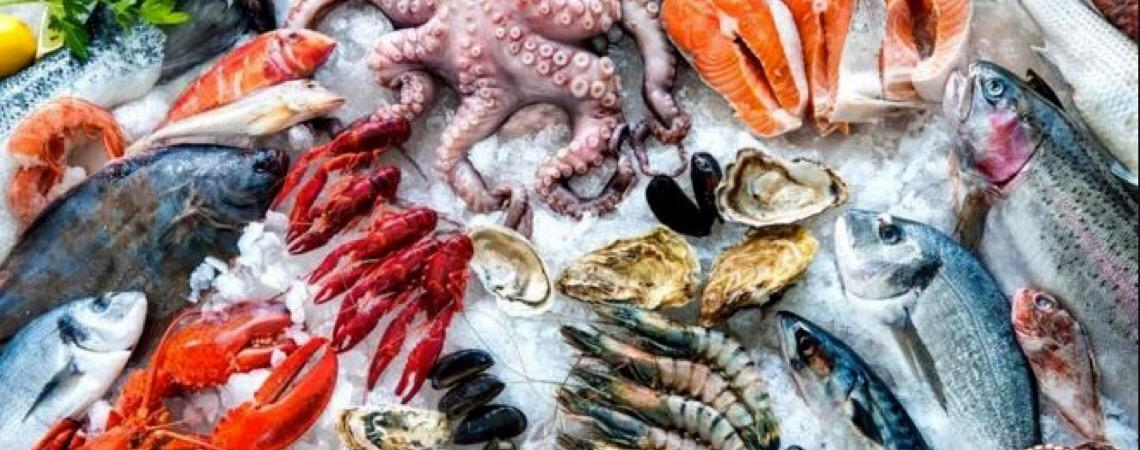 Consumo de peixes e o mistério do ciclo do mercúrio