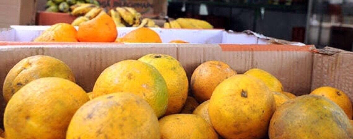 Emater em Brasília testa cultivo de fruta usada em doces finos e que custa até R$ 70 o quilo