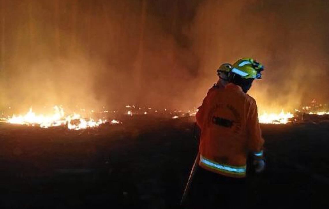 Áreas de preservação sob alto risco de incêndio em Brasília