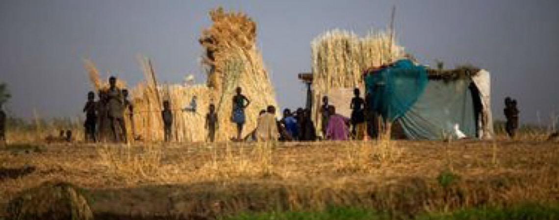 Mais de 821 milhões de pessoas no mundo passaram fome em 2018, diz ONU