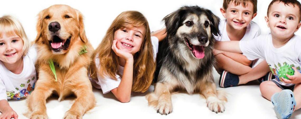 Pet terapia. Cães auxiliam pessoas com deficiências