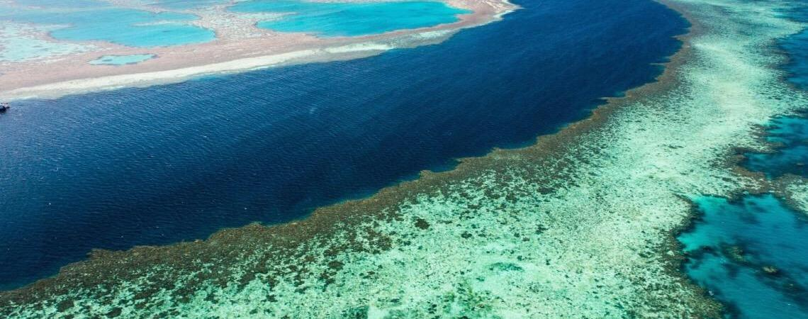 Austrália. A Grande barreira de corais