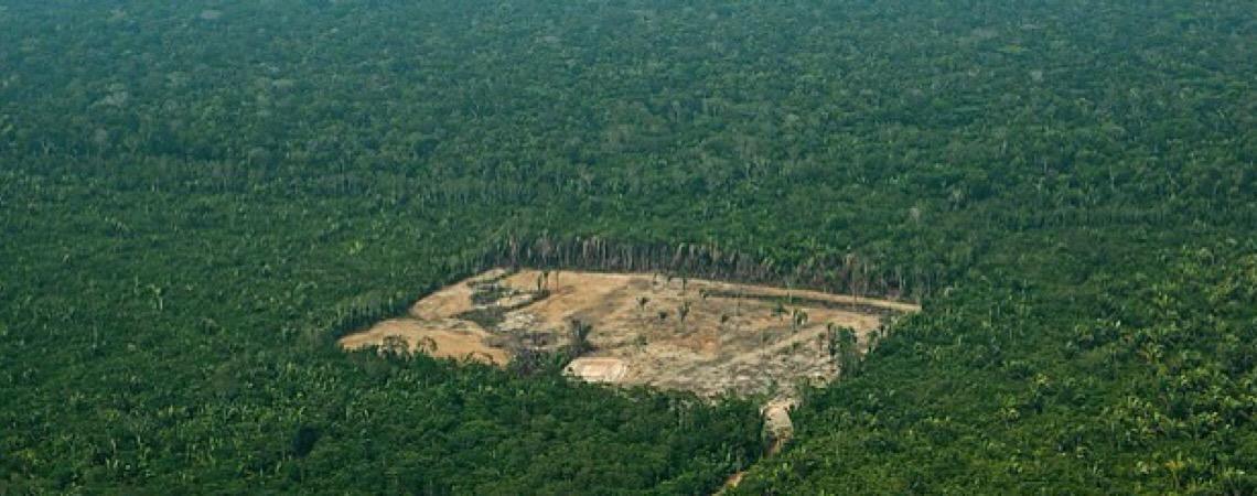 Somos todos Amazônia para a saúde do planeta. A própria vida no planeta depende da preservação da floresta amazônica