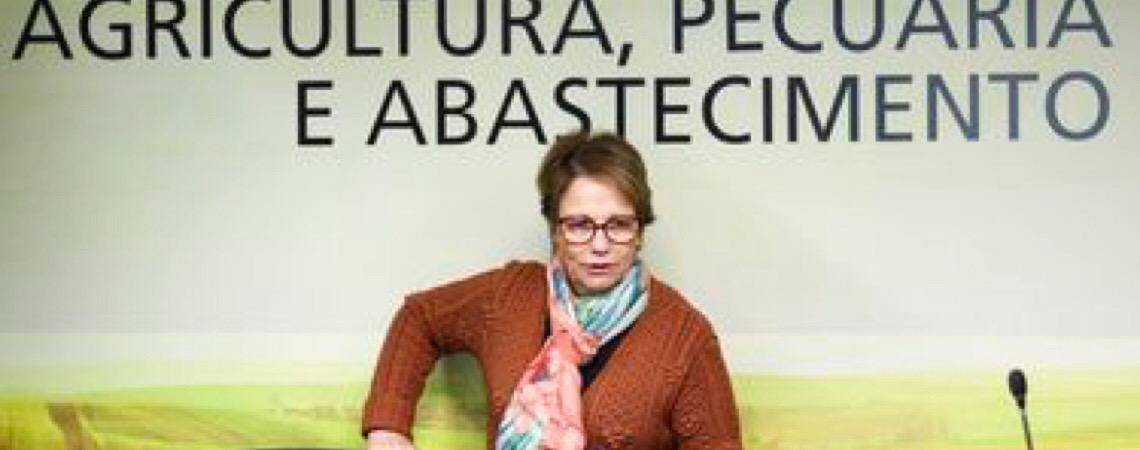 Ministra da agricultura do Brasil teme que críticas a agrotóxicos gerem guerra comercial