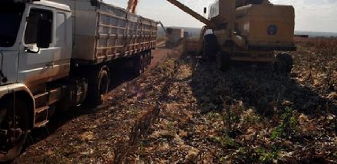 Mudança climática ameaça produção de alimentos, alerta Organização das Nações Unidas