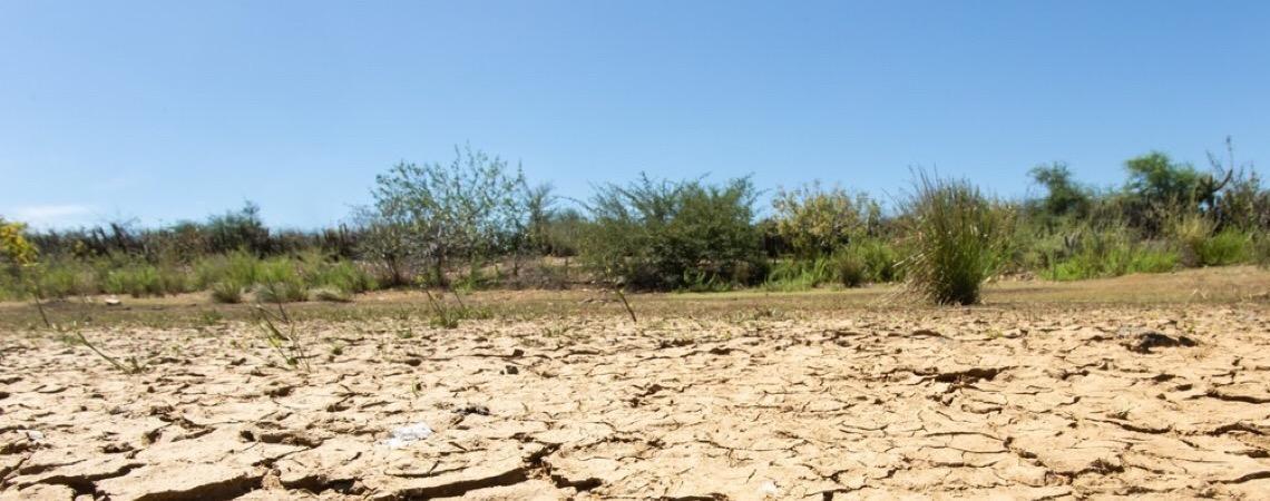 Desertificação atinge 13% do semiárido do Brasil e ameaça conservação da caatinga