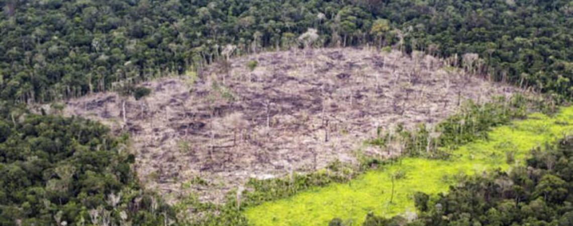 Procuradoria da República pede informações sobre desmatamento e incêndios na Amazônia