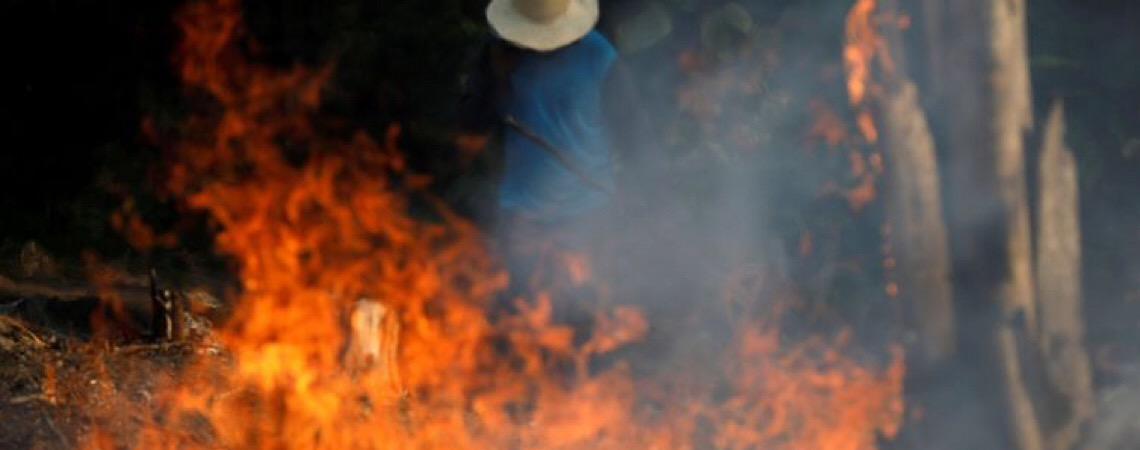 Presidente Donald Trump oferece a Jair Bolsonaro ajuda à Amazônia