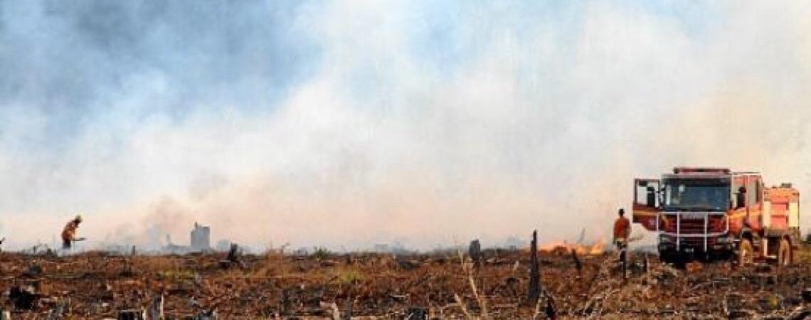Área queimada cresce 37% na capital do Brasil