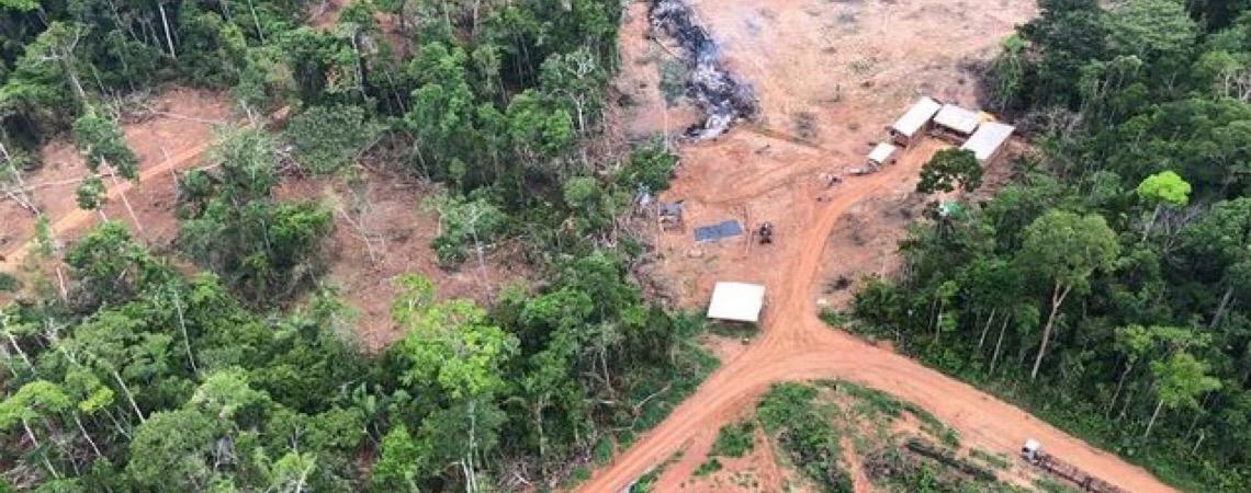 Investigação do MPF indica que desmatamento e queimadas envolvem crime organizado