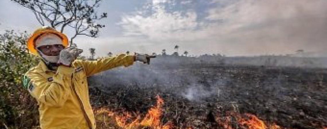 O que está acontecendo no Brasil? Amazônia e queimadas, histeria coletiva
