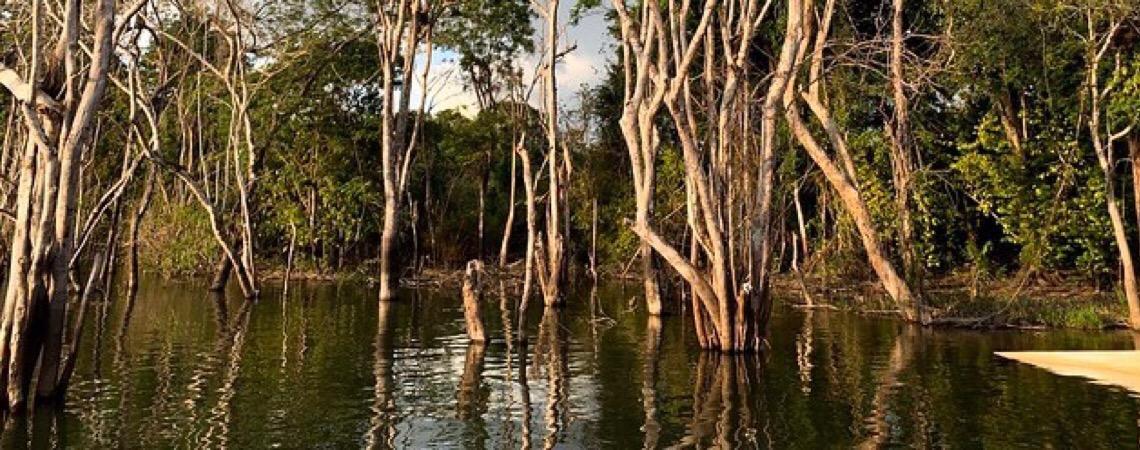 MPF pede ajuste na licença de Belo Monte.