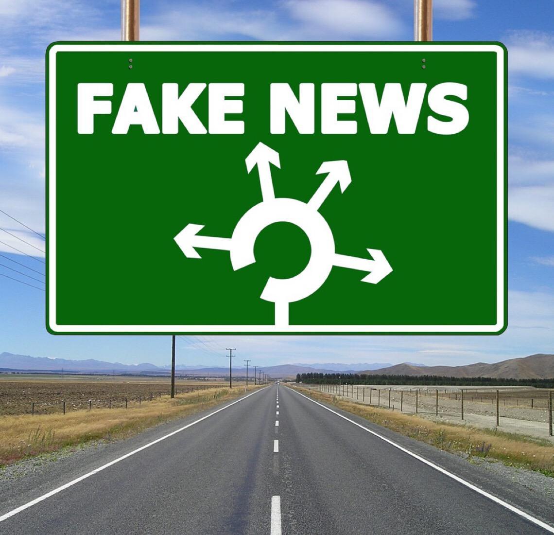 Pesquisadora afirma que fake news poderão ter graves consequências nas eleições municipais de 2020