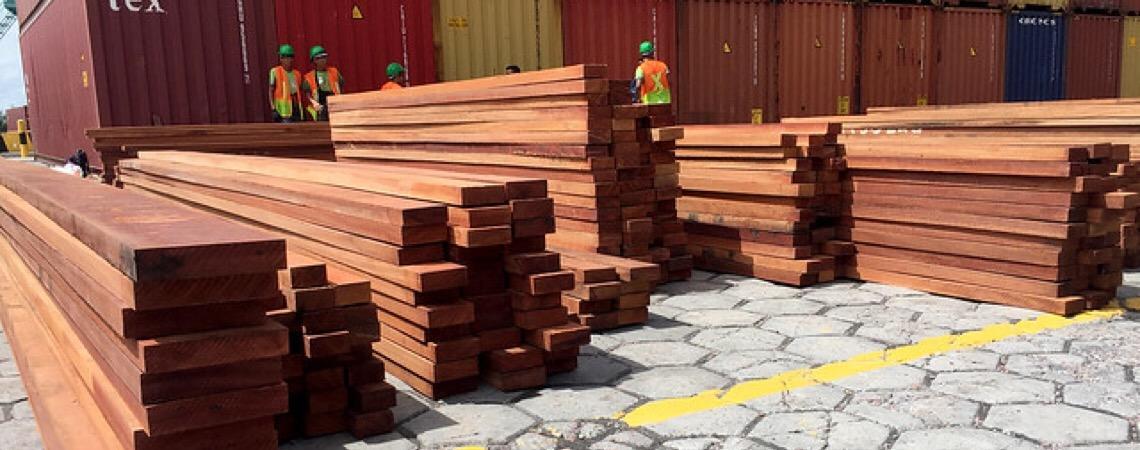 Amazônia em chamas. 90% da madeira exportada é ilegal, diz Polícia Federal brasileira
