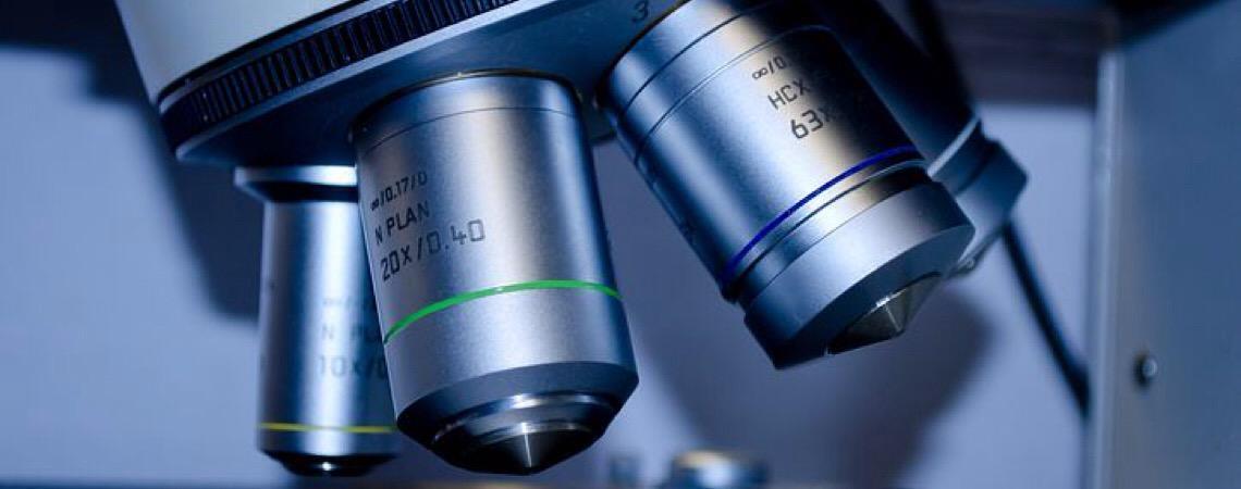 Instituto Serrapilheira oferece bolsa de R$ 100 mil a jovens pesquisadores