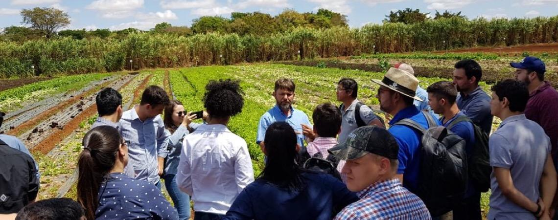 Mercado Malunga. Foco na qualidade de vida e o sonho de mudar o jeito de as pessoas se alimentarem em Brasília