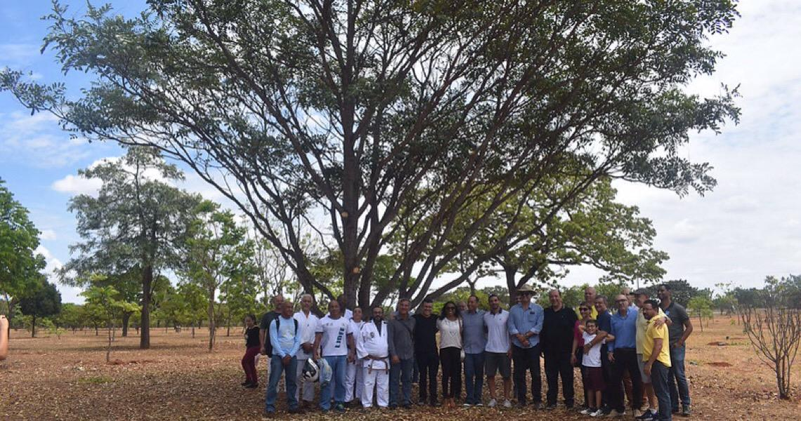 Bosque do Judô é inaugurado no Parque da Cidade em Brasília