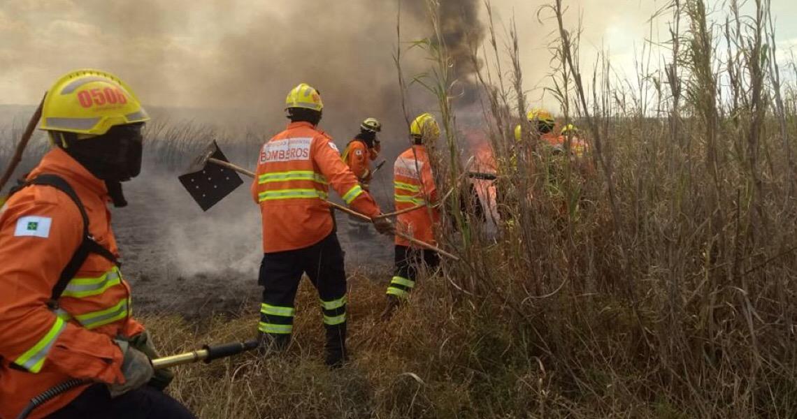 Grande incêndio atinge área de mata próxima à Cidade do Automóvel
