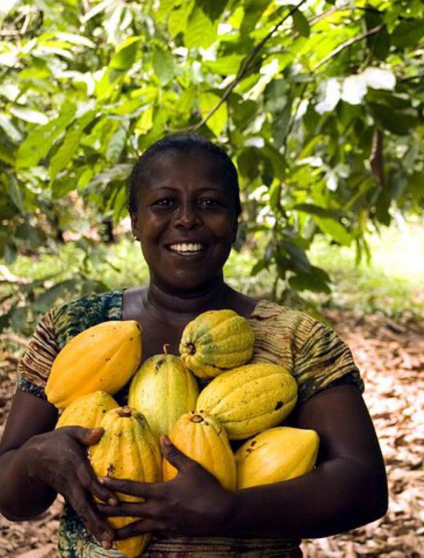Um terço das mulheres com emprego no mundo trabalha em agricultura