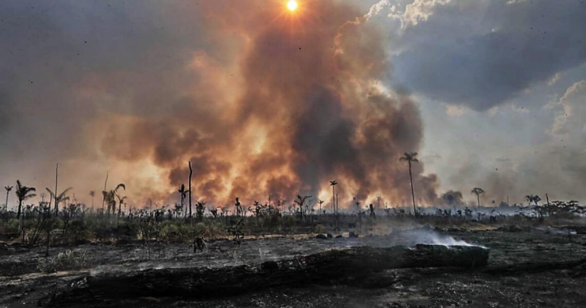 Polícia Federal faz buscas contra incendiários que combinam por aplicativos ataques à floresta