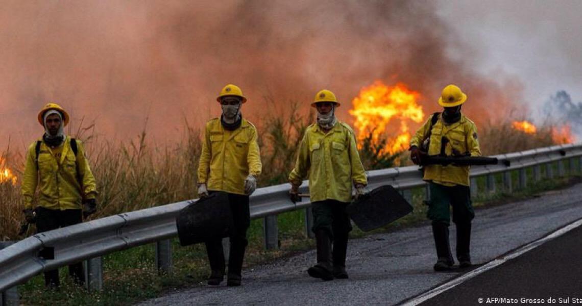 O Pantanal em chamas. Bombeiros não descartam ação criminosa