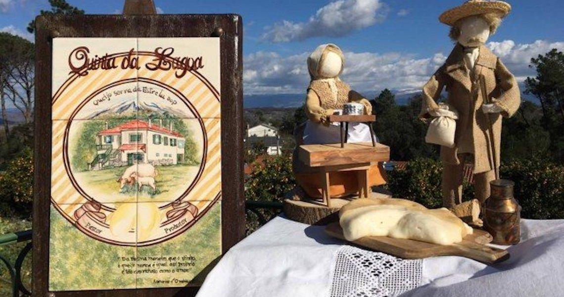 Cinco queijarias premiadas para visitar em Portugal