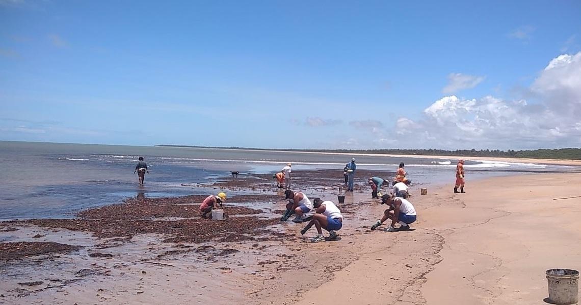 RN, PB, SE, PE e BA estão com as praias limpas, afirma nota do governo federal