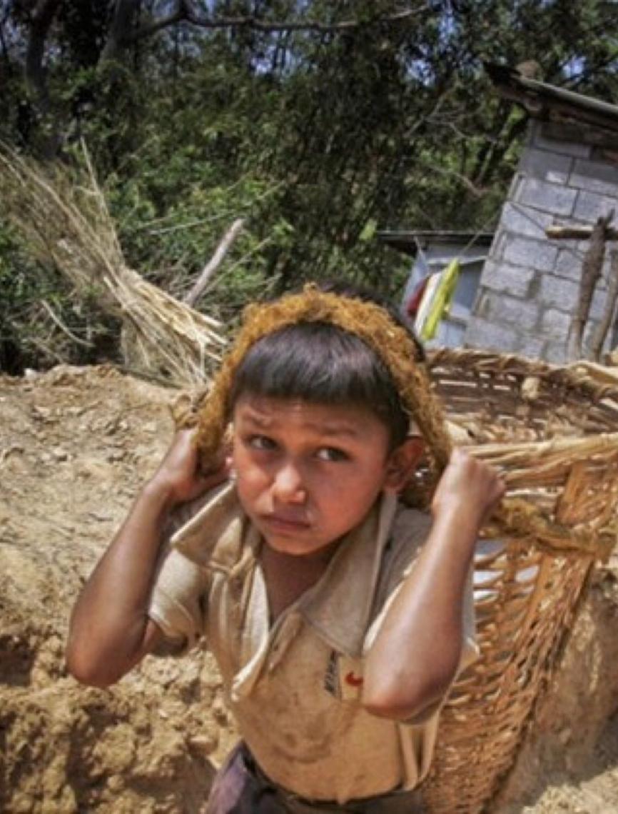 Trabalho infantil representa 22% da cadeia de abastecimento na América Latina e Caribe