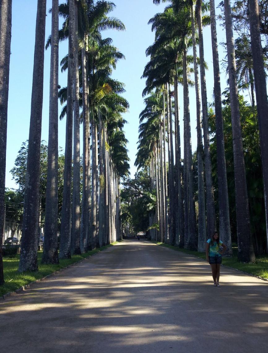A perigosa história dos jardins botânicos ao redor do mundo