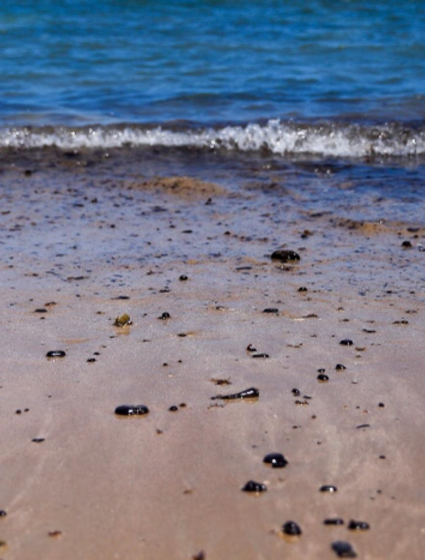 Universidade Federal de Alagoas afirma ter identificado navio que derramou óleo no litoral brasileiro