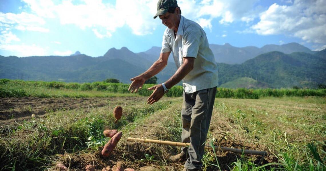 Com 60% dos pedidos de aposentadoria negados, agricultores se queixam de novas regras