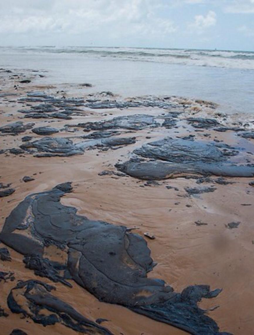 Comandante da Marinha afirma que não tem pistas de quem vazou óleo no litoral