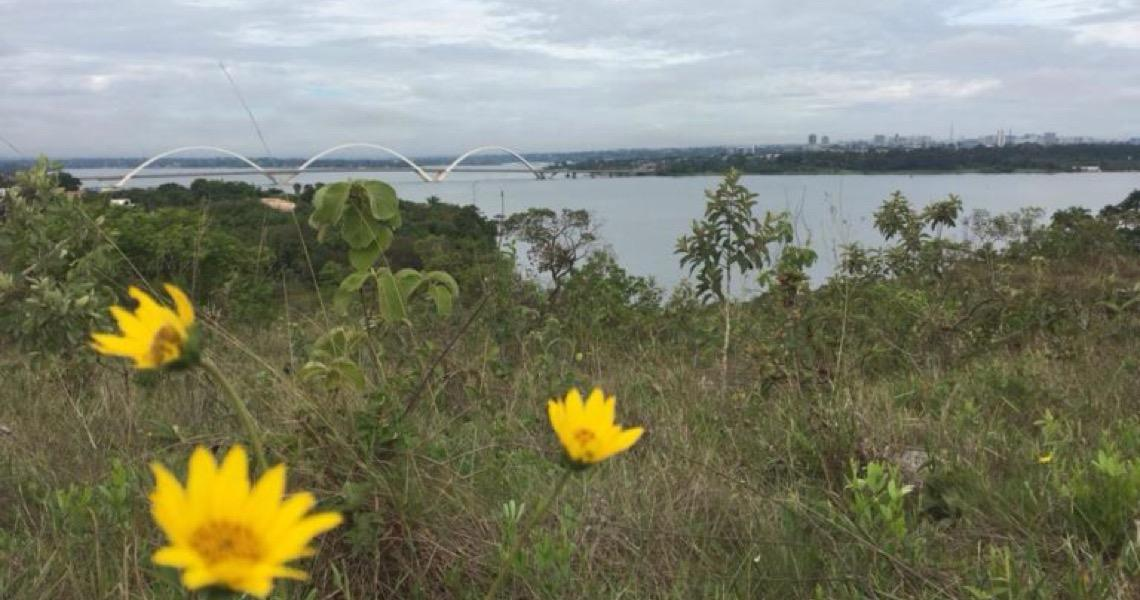 Parque das Copaíbas abre neste domingo. O parque fica entre a QI 26 e a QI 28, no Lago Sul