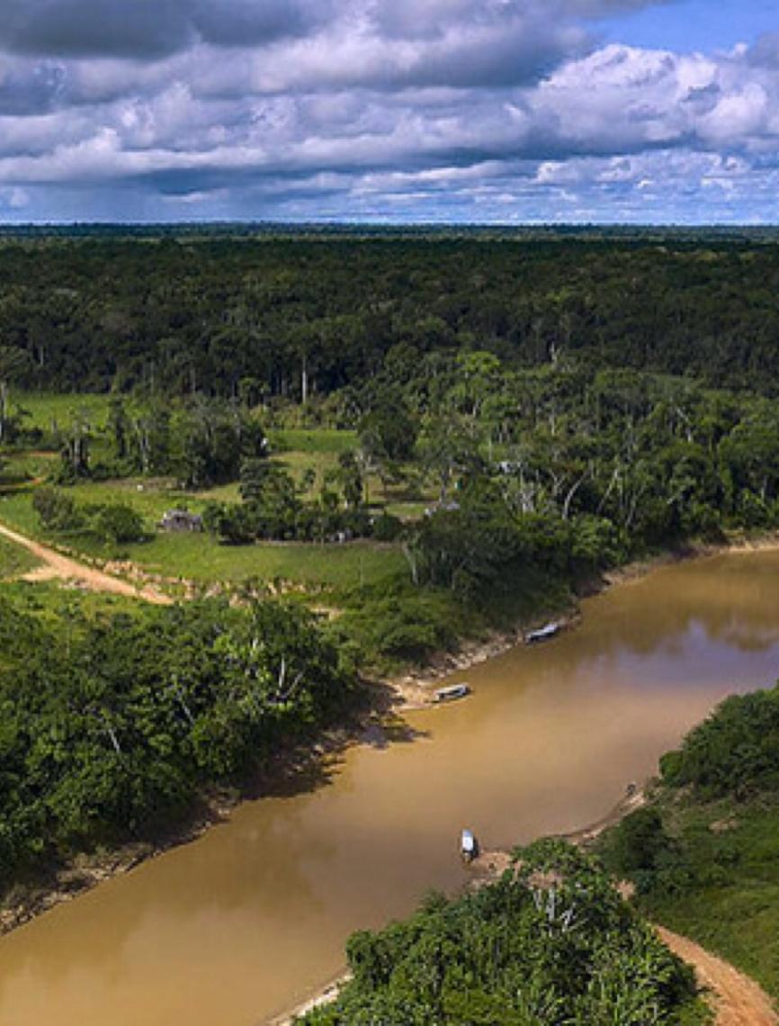 Organizações reagem à suspensão da fiscalização na Reserva Chico Mendes, no Acre