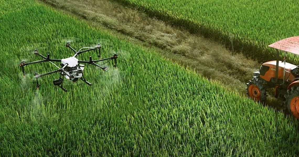 Empresas estrangeiras 'desovam' no Brasil agrotóxico proibido em seus próprios países