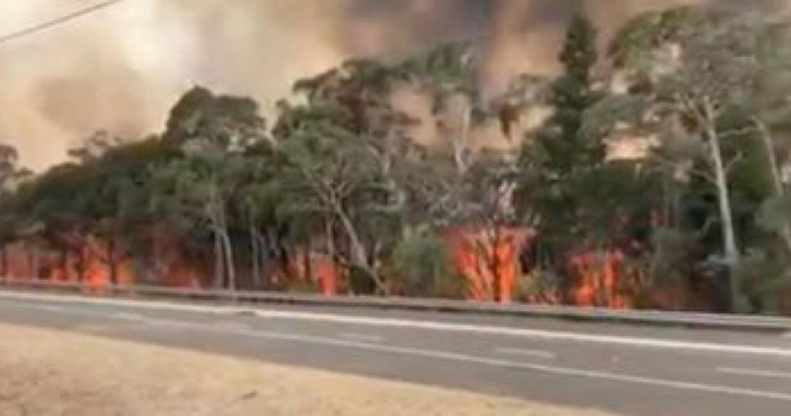 Austrália terá 1,2 bi de euros para recuperar áreas afetadas pelo fogo