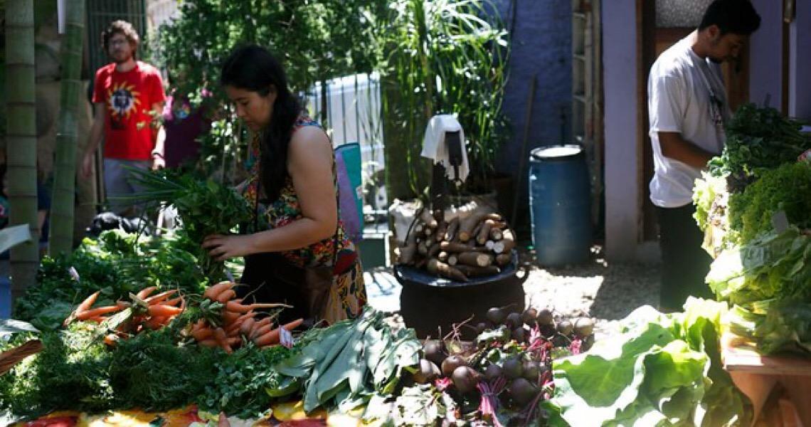 Projeto abastece restaurantes com produção da agricultura familiar no Rio de Janeiro