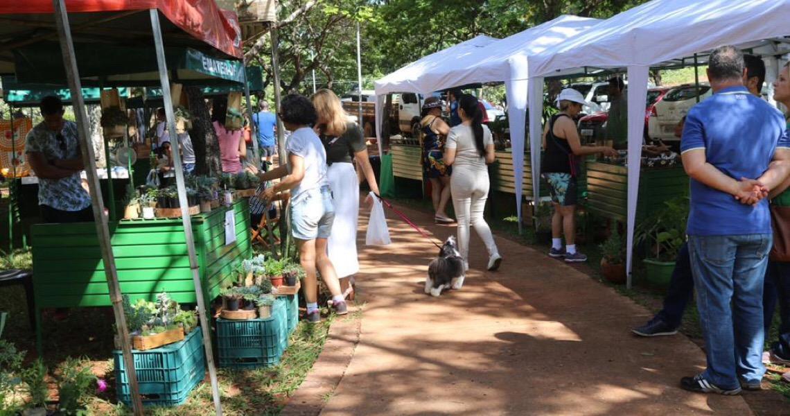 Feira Rural abre espaço ao público para agricultura local