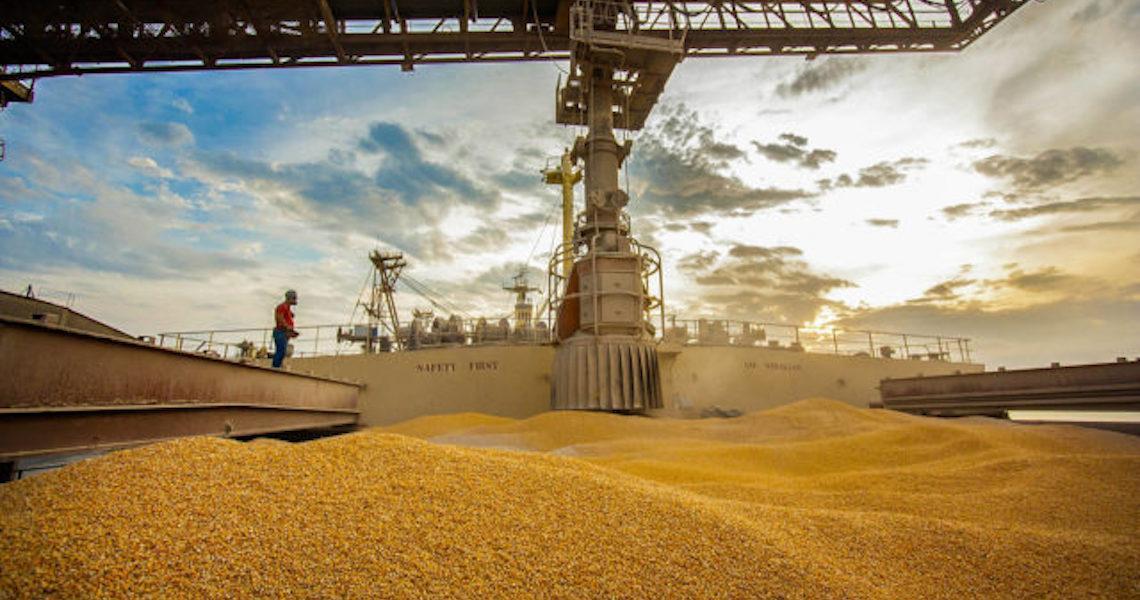 'Brasil, maior exportador de milho do mundo, vai ter falta do grão em 2020'