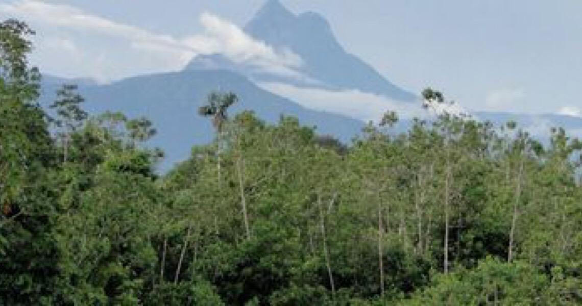 ICMBio abre edital para retomar turismo no Parque do Pico da Neblina